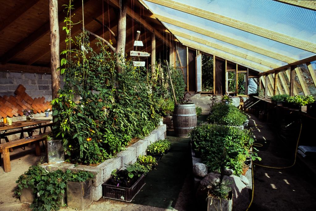 Växthus -Foto Erik Sjödin